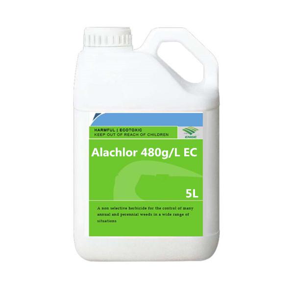 Alachlor