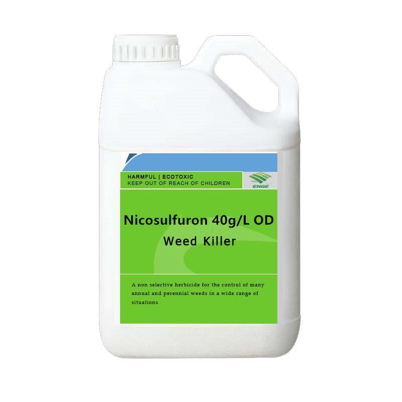 Nicosulfuron oD