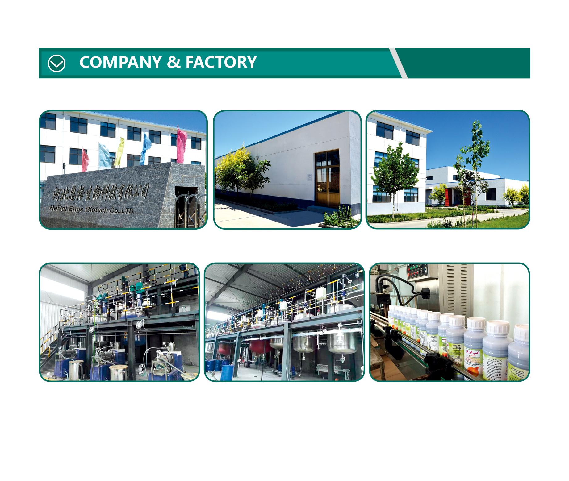 company factory.
